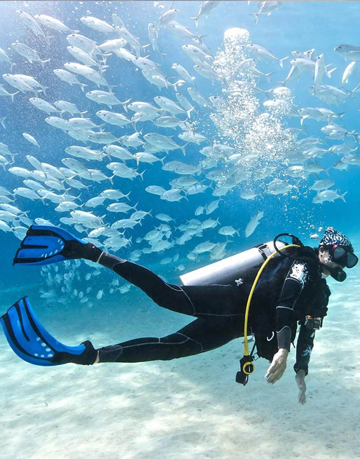 Scuba Diving Bonaire